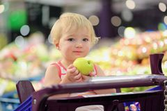 Cute preschooler girl sitting in shopping cart Royalty Free Stock Photo