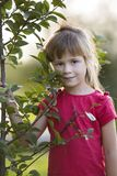 Cute pretty child girl with gray eyes and long blond hair smiling shyly holding young tree on blurred sunny summer royalty free stock images