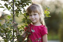 Cute pretty child girl with gray eyes and long blond hair smiling shyly holding young tree on blurred sunny summer bokeh royalty free stock photography