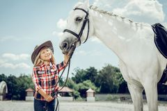 Cute pretty girl touching the horse snaffle stock photography