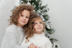 Cute pretty girls near Christmas tree Stock Image