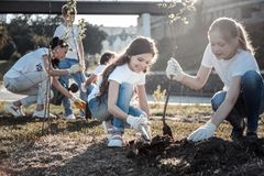 Cute pretty girls planting trees Royalty Free Stock Image