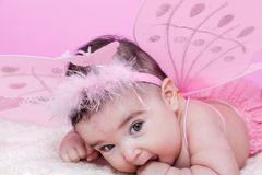 Cute, pretty, happy, chubby and smiling baby girl portrait, with pink butterfly wings Stock Photography