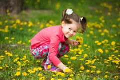 Cute pretty little girl  with yellow dandelions Stock Images