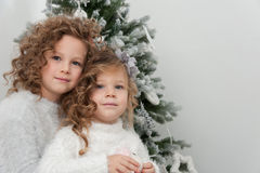 Cute pretty smiling girls near Christmas tree Stock Photography