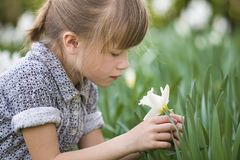 Cute pretty thoughtful child girl outdoor with white daffodil on sunny summer or spring day on blurred green background.  royalty free stock photo