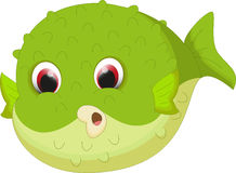 Cute puffer fish cartoon Royalty Free Stock Photo
