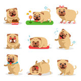 Cute pug dog activities during day set. Dog daily routine vector illustrations Royalty Free Stock Images