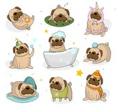 Cute pug dog set. Hand drawn pug stickers isolated on white back vector illustration