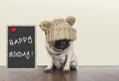 Cute pug puppy dog with bad monday morning mood, sitting next to blackboard sign with text happy monday, copy space. Cute pug puppy dog with knitted hat and bad Royalty Free Stock Photos