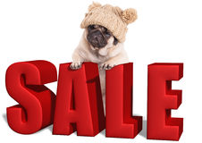 Cute pug puppy dog hanging with paws on big red sale sign, isolated on white background Royalty Free Stock Images