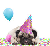 Cute pug puppy dog with party hat lying down on confetti, sticking out tongue, tired of partying, on white background. Cute pug puppy dog with pink party hat royalty free stock photography