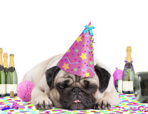 Cute pug puppy dog wearing party hat, lying down on confetti, fed up and drunk on champagne, tired of partying, on white backgroun Royalty Free Stock Image
