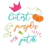 Cute pumpkin banner autumn text Cutest pumpkin in the patch Vector fall design logo label phrase royalty free illustration