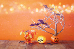 Cute pumpkins, candy and tree with bats Stock Image