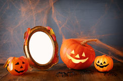 Cute pumpkins next to blank photo frame Royalty Free Stock Image