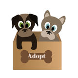 Cute puppies in a box. Two puppies in a box Stock Photo
