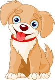 Cute puppy stock illustration