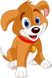 Cute Puppy. Vector illustration of a cute puppy, wearing a red collar with a dog tag Stock Photos