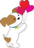 Cute Puppy Balloons Stock Photography