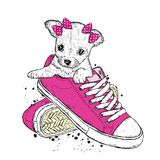 A cute puppy with a bows sits in sneakers. Vector illustration. Beautiful dog. royalty free illustration