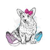Cute puppy with bows and sneakers in polka dots. Vector illustration for a postcard or a poster, print for clothes. Pedigree dog. Royalty Free Stock Photography