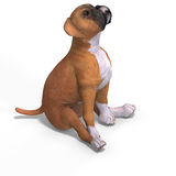 Cute puppy boxer. Very cute young dog over white with Clipping Path stock illustration