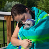 Cute puppy cuddle stock image