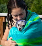 Cute puppy cuddle. Girl cuddling a wet dog in a towel after a swim with the puppy facing the camera with a plaintive impression Stock Image