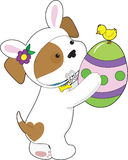 Cute Puppy Easter Egg Royalty Free Stock Photos