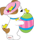Cute Puppy Easter Egg Stock Photography