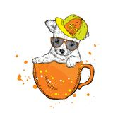 Cute puppy with glasses and a cap sits in a cup. Vector illustration for a card or poster. royalty free illustration