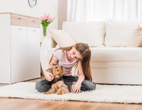 Cute puppy and happy young girl. Playing in the living room royalty free stock photos