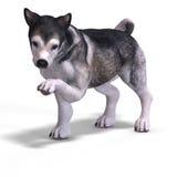 Cute puppy malamute Royalty Free Stock Photo