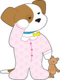 Cute Puppy Pajamas. A cute, sleepy puppy still wearing its collar, is ready for bedtime dressed in pajamas and with a teddy bear in hand Royalty Free Stock Images
