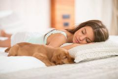 Cute puppy pet with mistress sleep on the pillow. Cute puppy pet with attractive mistress sleep on the pillow Royalty Free Stock Photo
