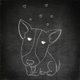 Cute puppy pitbull Royalty Free Stock Photos