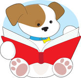 Cute Puppy Reading Stock Photography