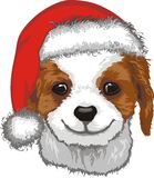 Cute Puppy In Santa Hat Stock Photography