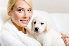 Cute puppy sitting on the hands of woman Royalty Free Stock Images
