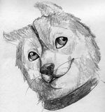 Cute puppy sketch Royalty Free Stock Image