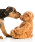 Cute puppy and teddy bear Stock Photography