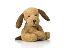Cute Puppy Toy Royalty Free Stock Image
