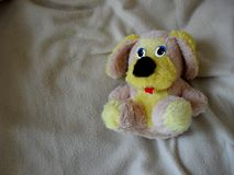 Cute puppy toy shot stock images