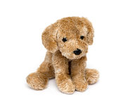 Cute puppy toy Royalty Free Stock Images