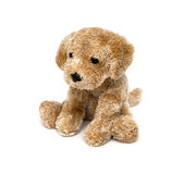 Cute puppy toy Stock Images