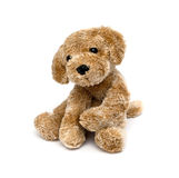 Cute puppy toy Stock Photos
