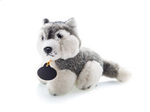 Cute puppy toy shot on white Stock Images