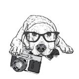 Cute puppy with a vintage camera. Pedigree dog. Labrador.  Royalty Free Stock Image