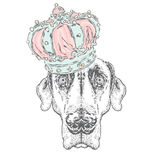 Cute puppy wearing a crown. Vector illustration for greeting card, poster, or print on clothes. Dog clothing. Stock Photos